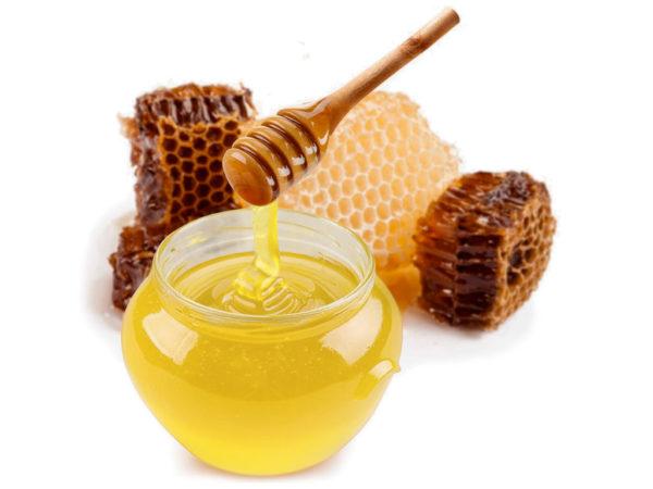 lipovyj-med