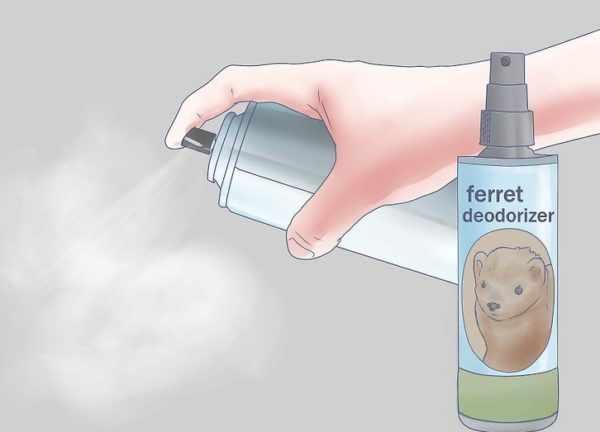 Средство от запаха хорька