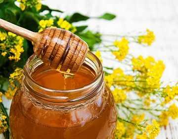 рапс мёд