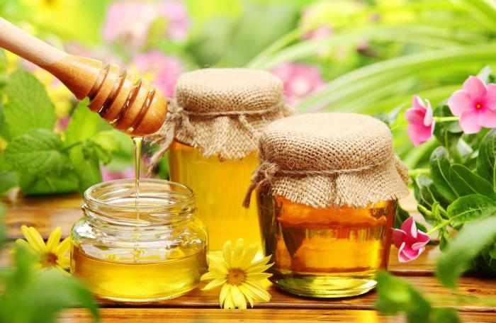 мед из трав