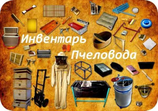 pchelovodstvo-dlya-nachinayushhih