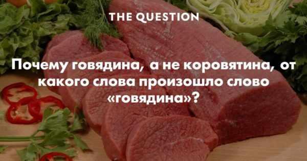 почему говядина
