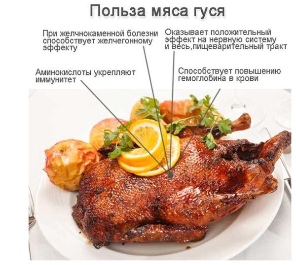 Полезность мяса гуся