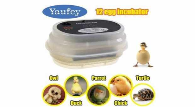 Yaufey Fully Automatic 9~12 Digital Eggs Incubator Chicken Incubator
