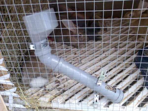 Бункерная кормушка из трубы
