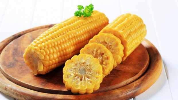 Кукуруза для шиншилл