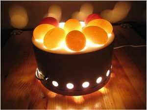 Овоскопирование яиц увеличить вывод цыплят