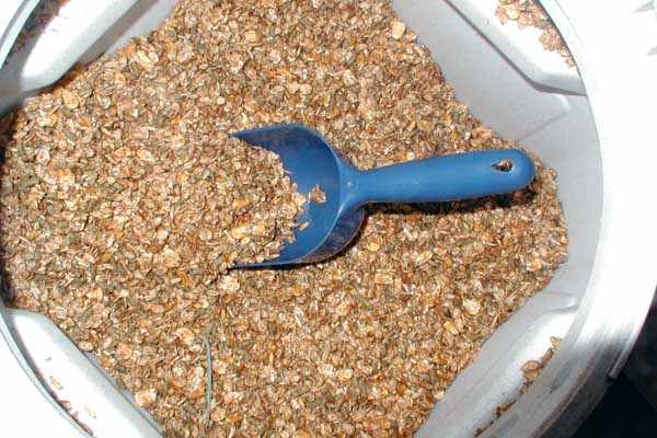 Плющенное зерно пшеницы