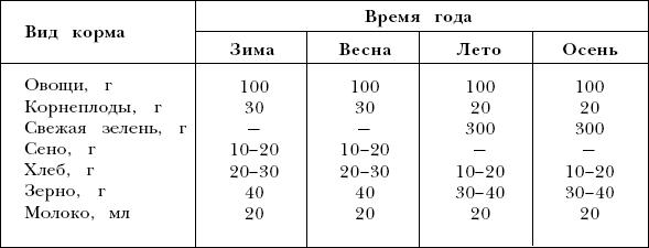 Рацион для свинок рекс в разные сезоны