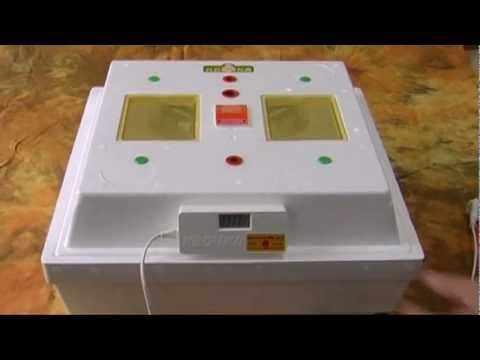 Инкубатор, модель Наседка 1