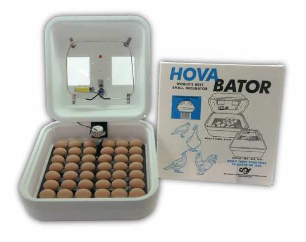 HovaBator 1602N