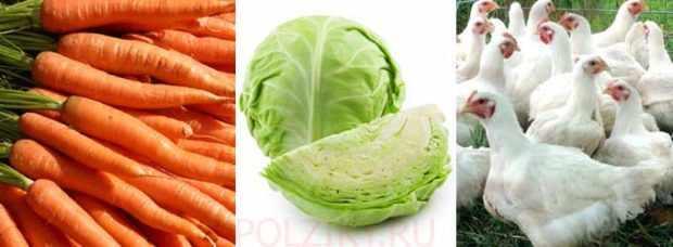 Овощи в рационе должны быть обязательно