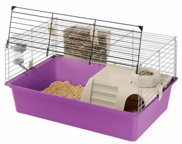 Оборудованный контейнер для морской свинки