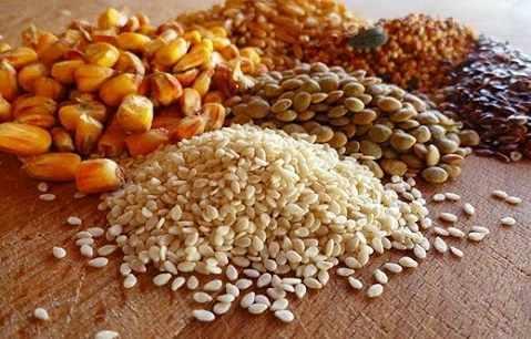 Зерновые - основа для комбикорма