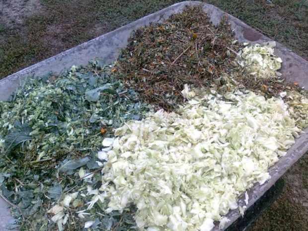 Измельченные садовые отходы