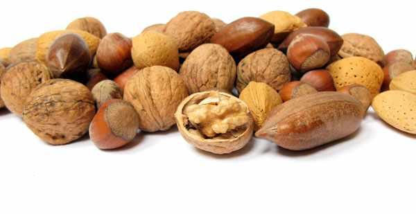 Орехи для шиншилл - полезная добавка