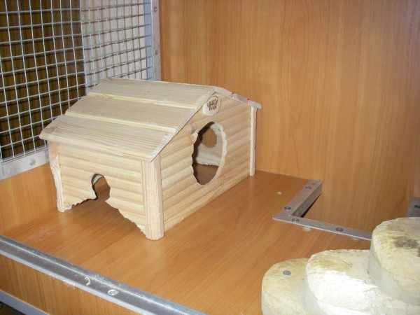 Готовый домик в клетке