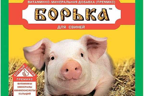 Премикс для свиней - важный компонет откорма