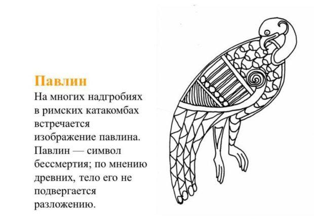 Символ бессмертия - павлин