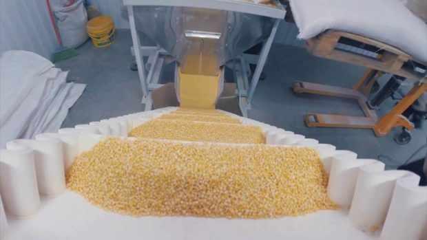 Производство булгура