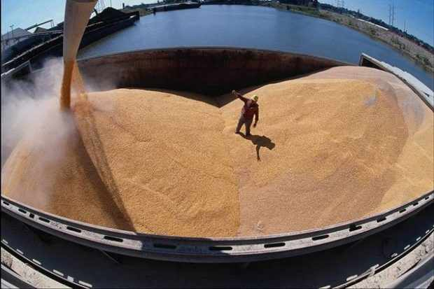 Загрузка зерна в бункер корабля
