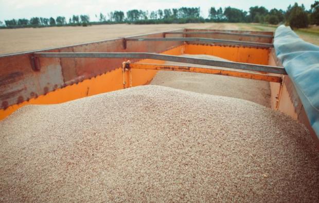 Транспортирование зерна