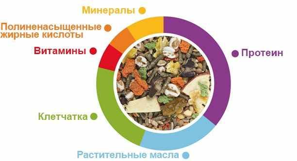 Состав готовых кормов