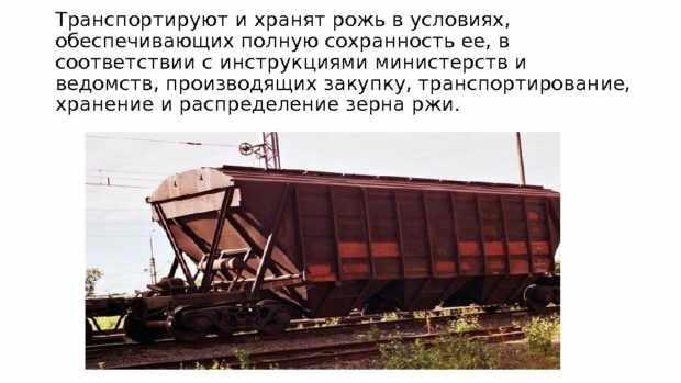 Транспортировка зерна