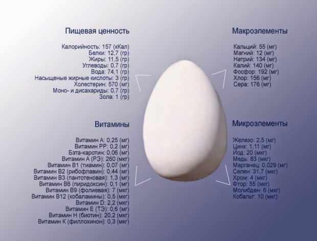 Польза и состав яиц