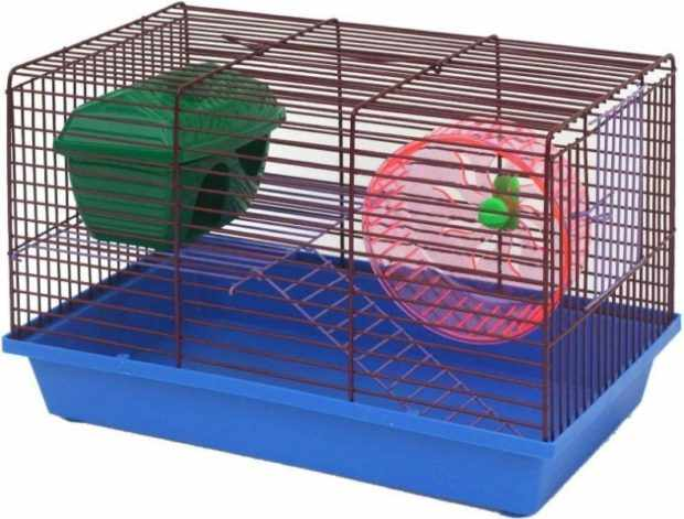 Клетка для двух свинок с колесом