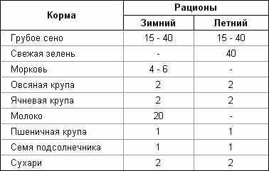 Таблица кормления шиншилл