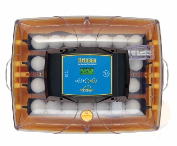 Инкубатор Ovation 28 Advance EX AUTO