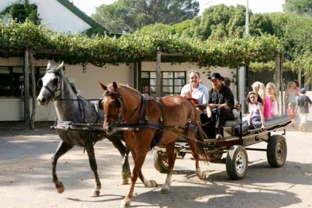 Деревенских коней можно называть как угодно