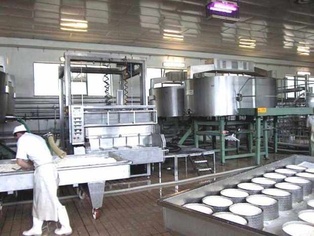 Цех сыроварения на заводе