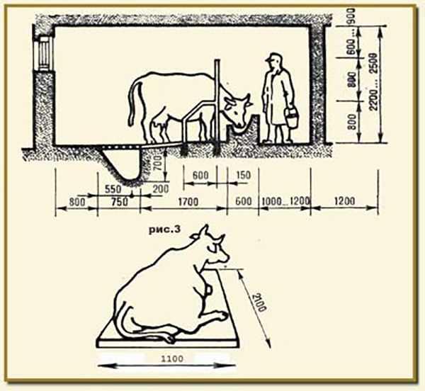 Расчетный модуль для проектирования коровника