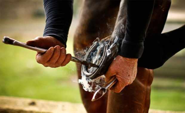 Подковку коня должен производить кузнец