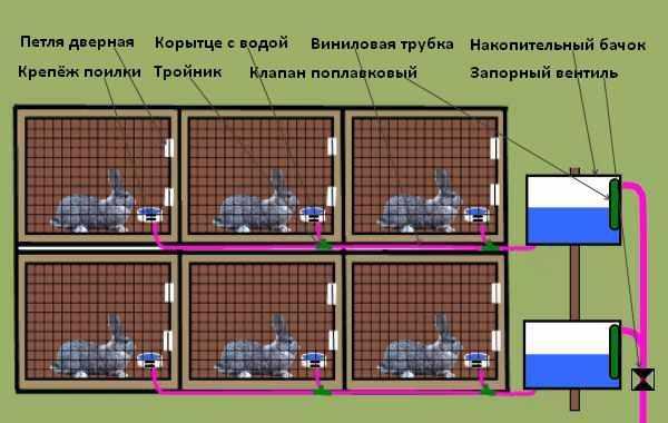 Схема автопоилки для крольчатника