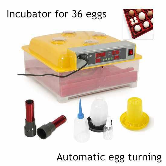 36 Egg Automatic Incubator