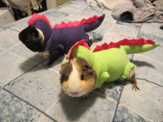 Свинки в костюмах динозавров