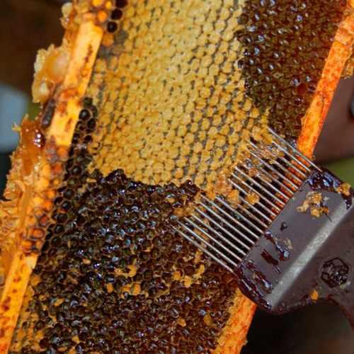 Вилка для распечатывания медовых сотов
