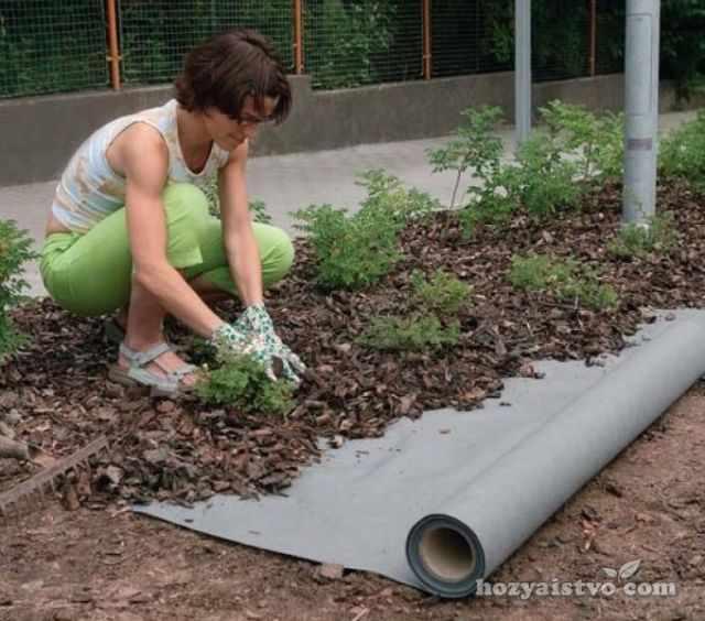 брезент для борьбы с сорняками