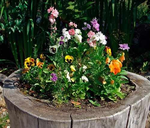 Декоративный пень на садовом участке