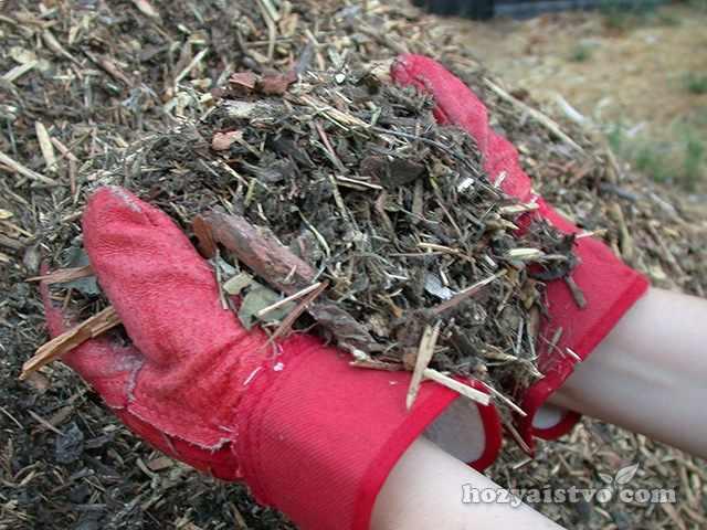 Мульчирующий материал из щепы деревьев и коры хвойных