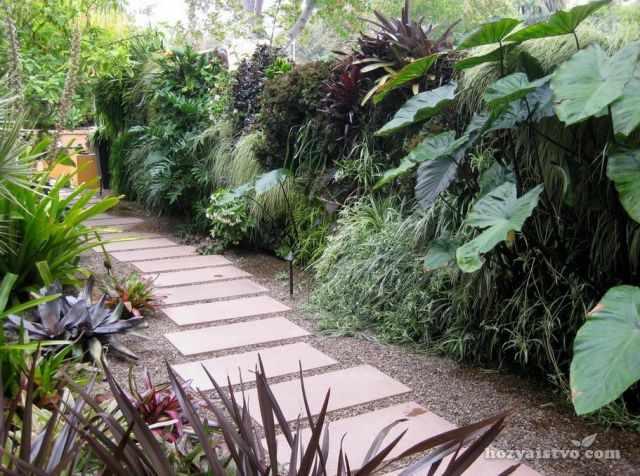 Тропический стиль ландшафтного дизайна