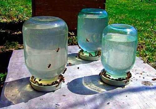Поилка с водой для пчел