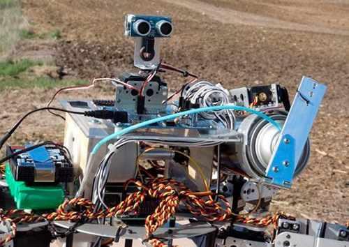 Сельхоз Технологии будущего
