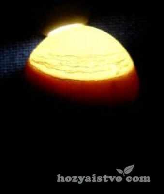 last incubation 2