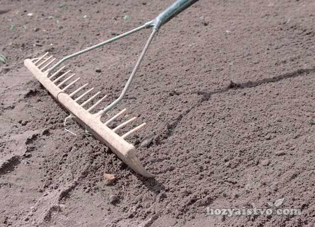 Подготовка и выравнивание почвы