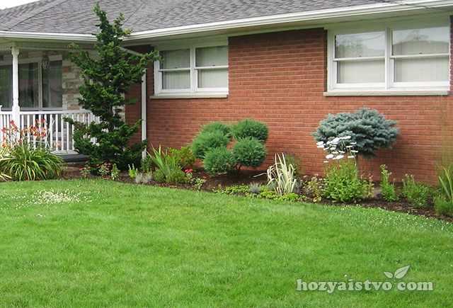 Красивый газон около дома