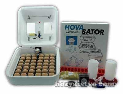 egg incubator hova bator